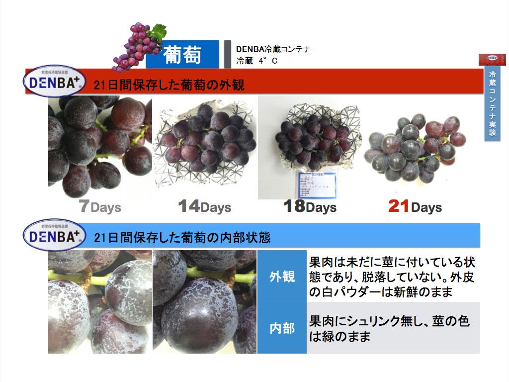 news2016-13.jpg